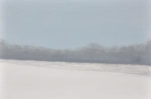 1 - Burdocks in Ice Fog