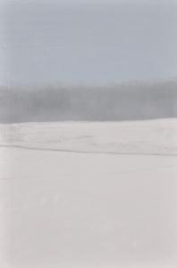 1 - Cedar Rail Fence in Ice Fog
