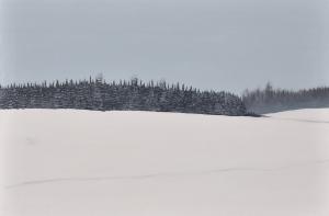 1 - Farm Field in Ice Fog