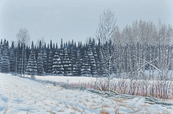 Finished - Fence Line in Ice Fog